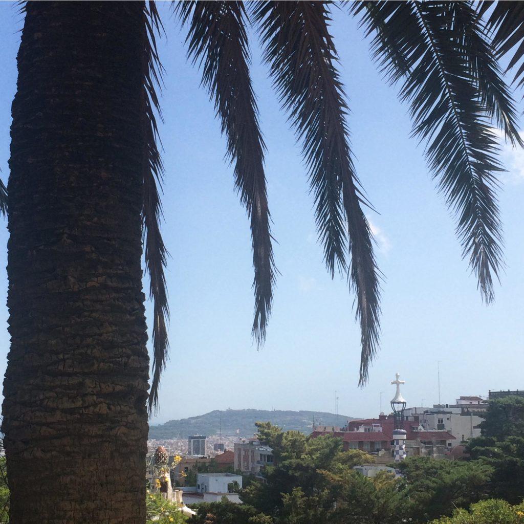 Barcelona Park Gueell Gaudi Palmen Ausblick Sommer 2016